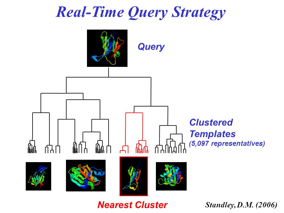 Real-Time Query Strategy