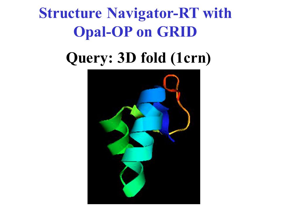 Structure Navigator-RT with Opal-OP on GRID