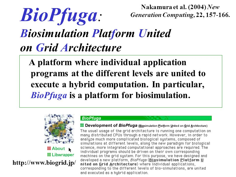 BioPfuga: Biosimulation Platform United on Grid Architecture
