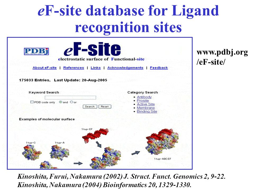 eF-site database for Ligand recognition sites
