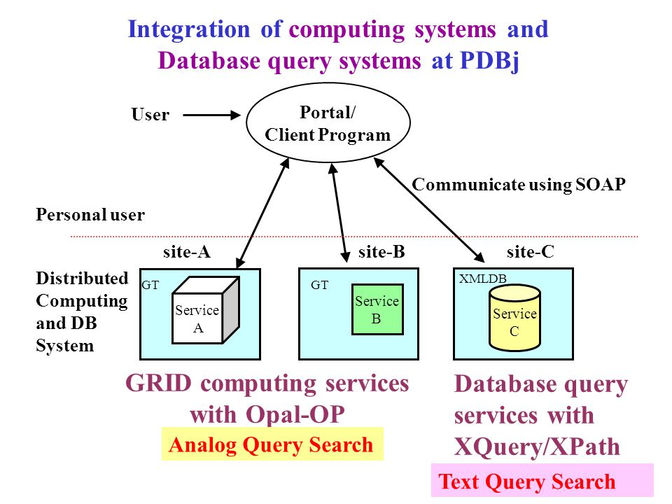 Integration of computing systems and Database query systems at PDBj