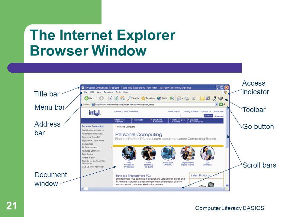 The Internet Explorer Browser Window
