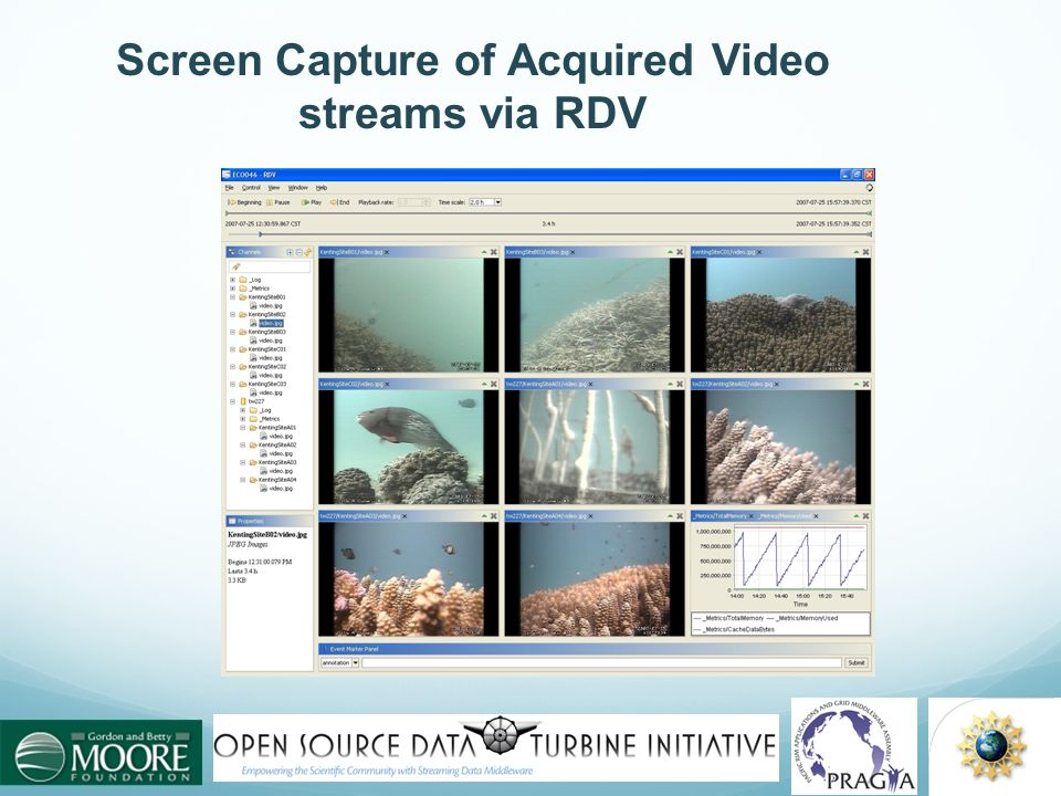 Screen Capture of Acquired Video