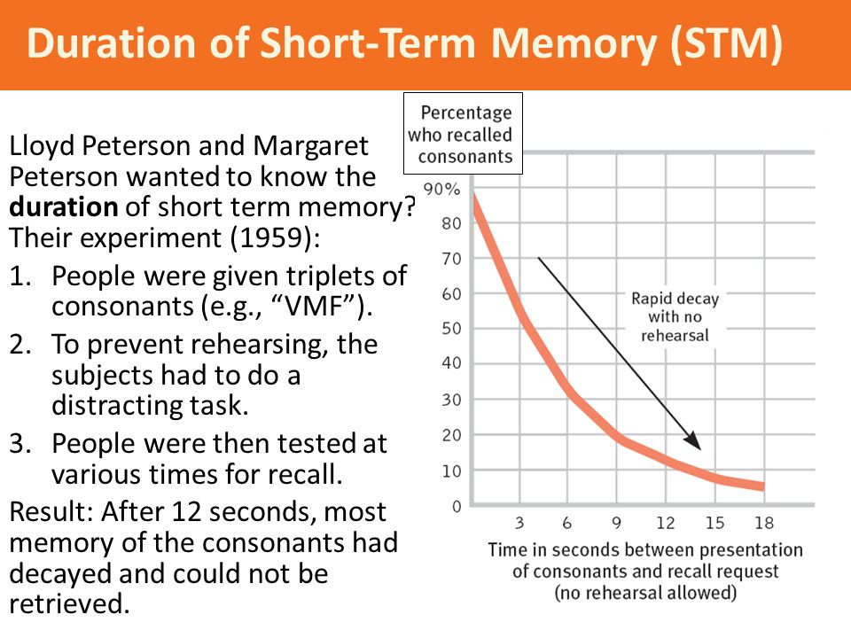 the complicated experimentation of short term memory Abstract-the retention of spatial information in visual short-term memory was assessed by measuring the short-term memory of the complex gratings experiments note that the on- and off-set of the masker were well outside the range of sensory masking on either the test or the reference grat- ing for all mask durations.