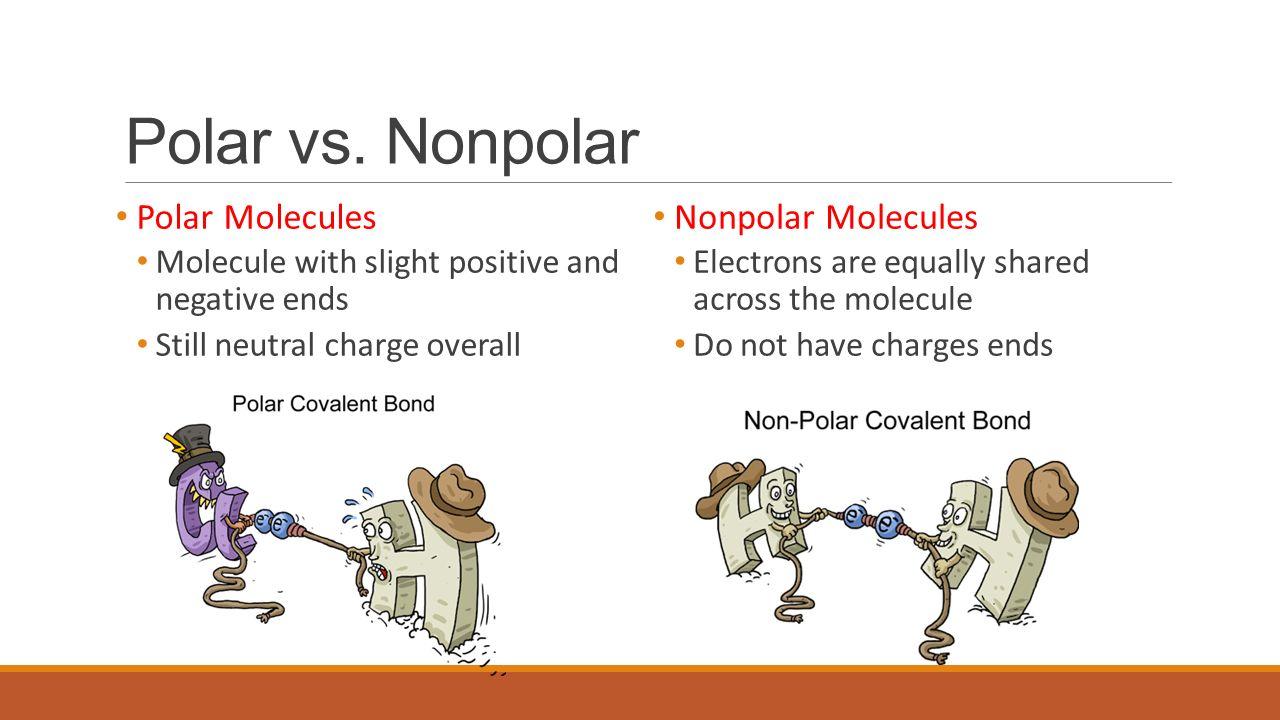 35334bc896a Polar Vs Nonpolar Molecules Related Keywords   Suggestions - Polar ...