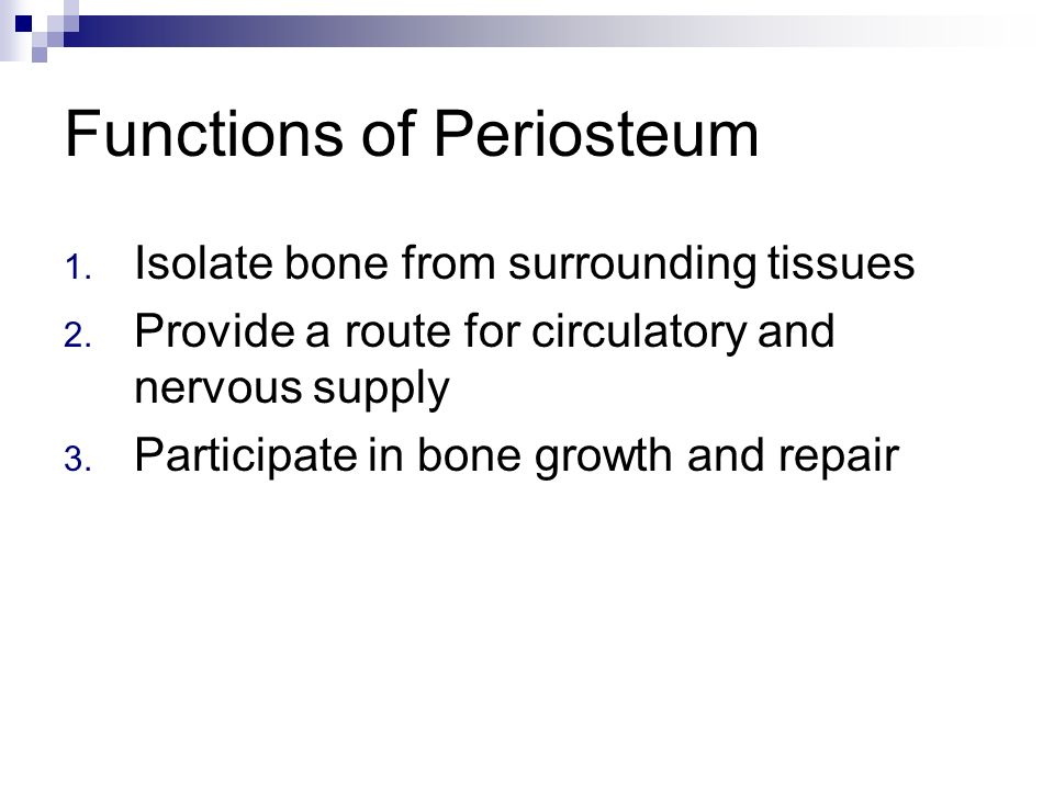 Lecture 6 Osseous Tissue And Bone Structure Ppt Download