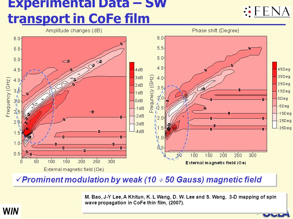 Experimental Data – SW transport in CoFe film