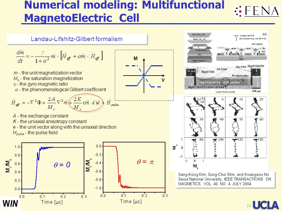 Numerical modeling: Multifunctional MagnetoElectric Cell