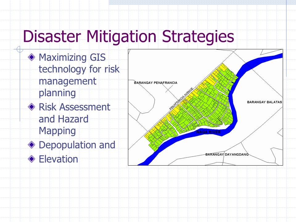 Disaster Mitigation Strategies
