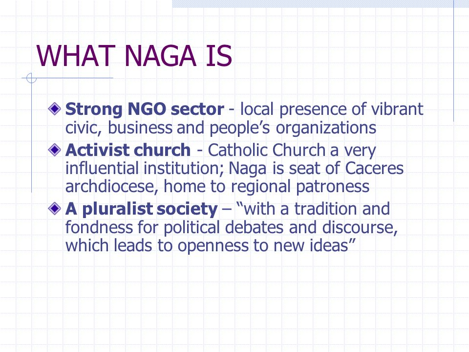 WHAT NAGA IS Strong NGO sector - local presence of vibrant civic, business and people's organizations.