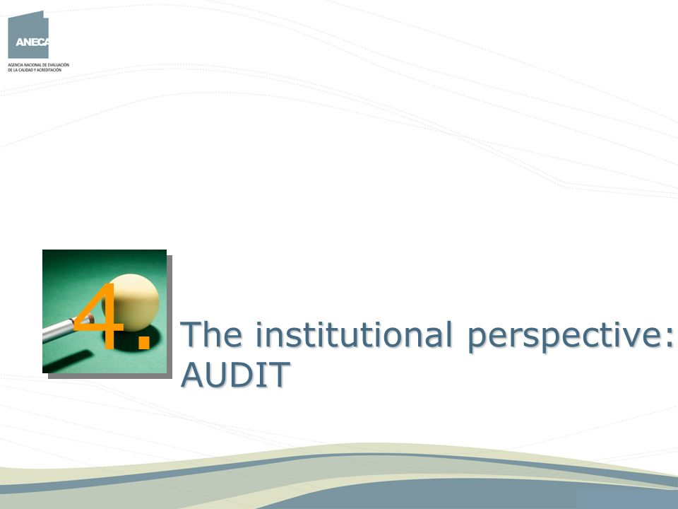4. The institutional perspective: AUDIT 24