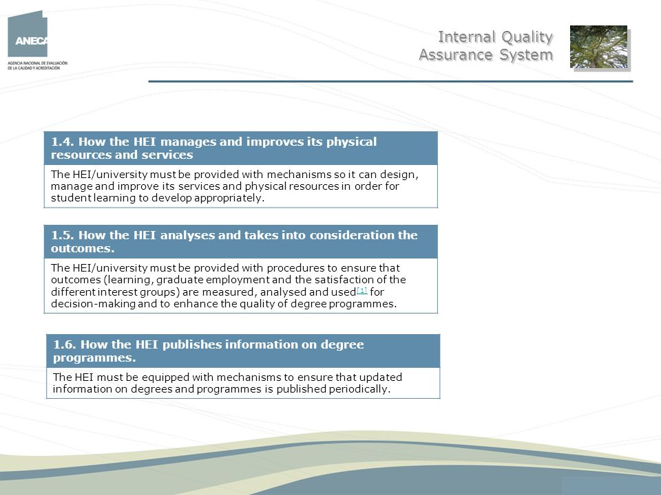 Internal Quality Assurance System
