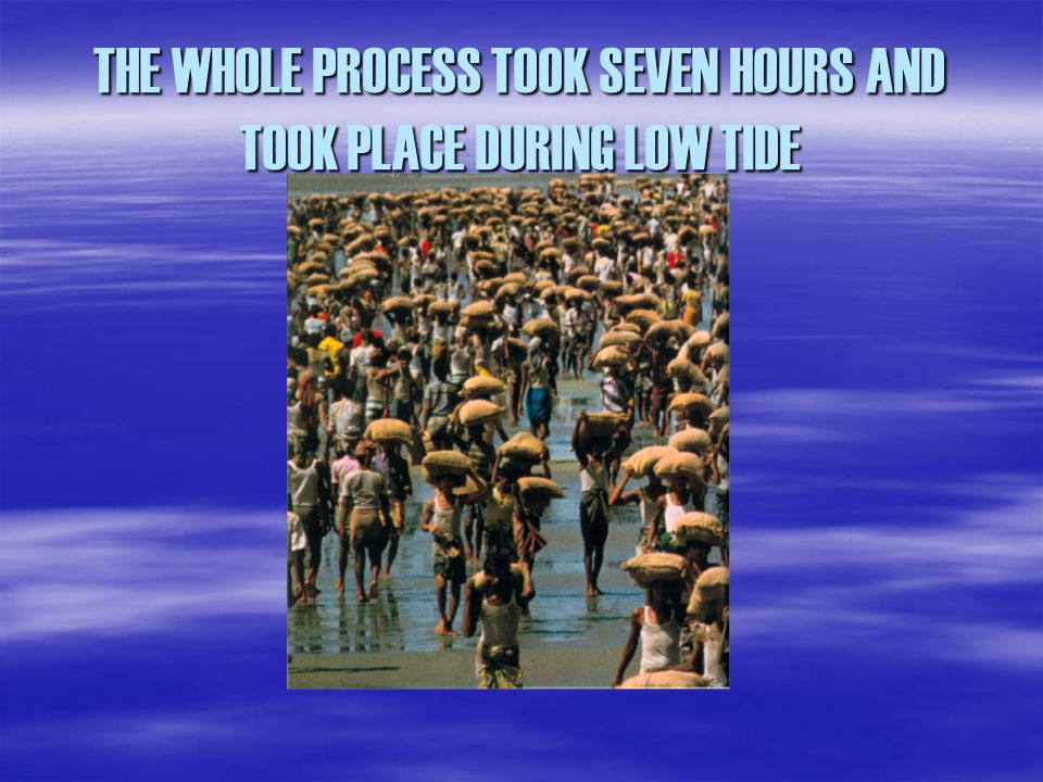 THE WHOLE PROCESS TOOK SEVEN HOURS AND TOOK PLACE DURING LOW TIDE