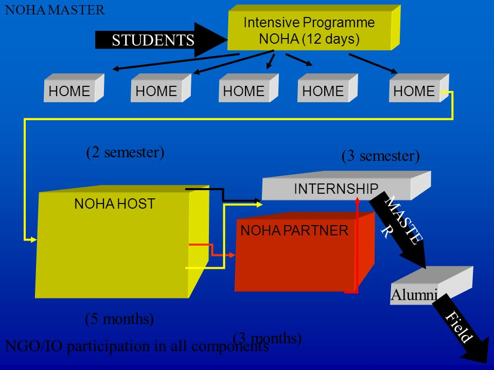 Intensive Programme NOHA (12 days)