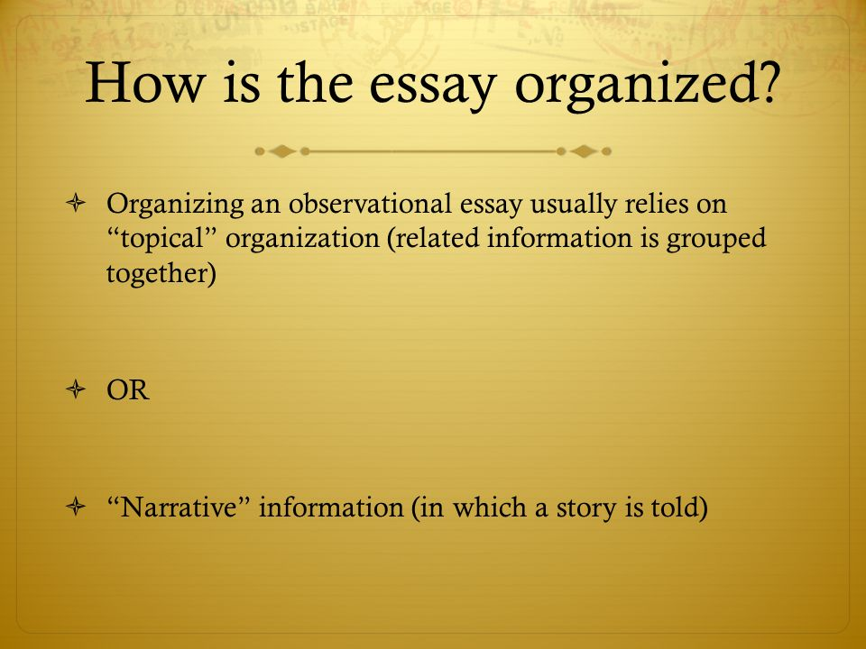 analytical observation essay