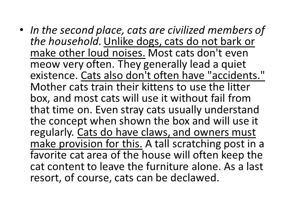 persuasive essay introduction ppt video online  in the second place cats are civilized members of the household