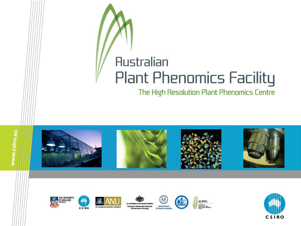 Notes for teachers This presentation has been designed to complement the information provided in the Plant Phenomics Teacher Resource.