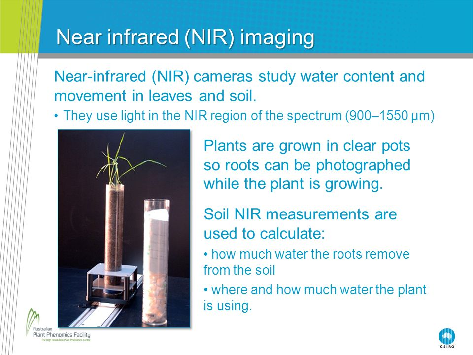 Near infrared (NIR) imaging