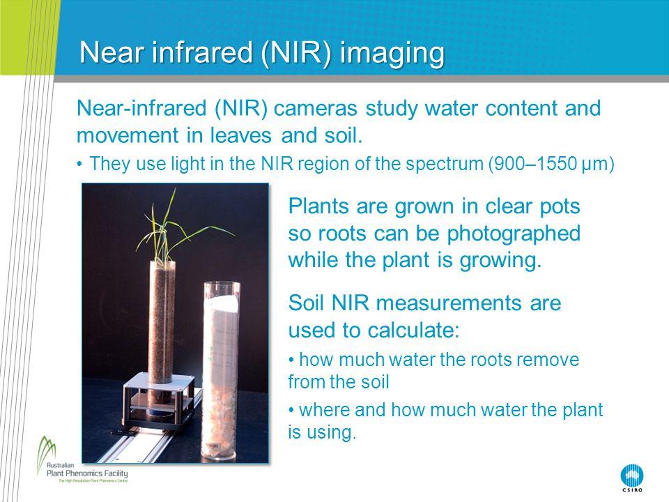 Near infrared (NIR) imaging