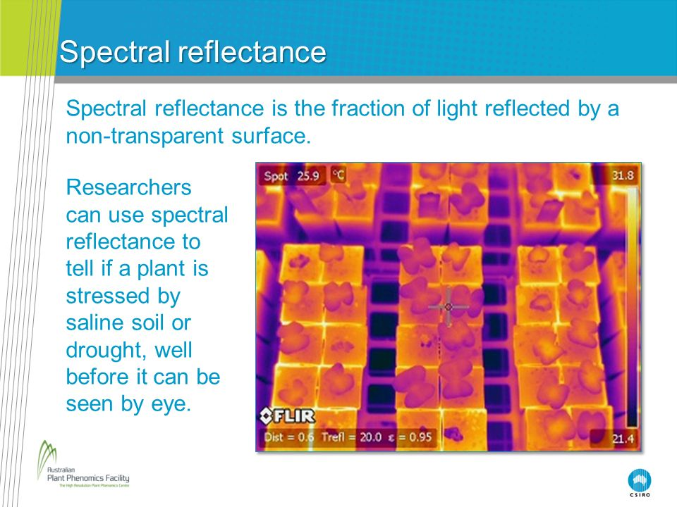 Spectral reflectance Spectral reflectance is the fraction of light reflected by a non-transparent surface.