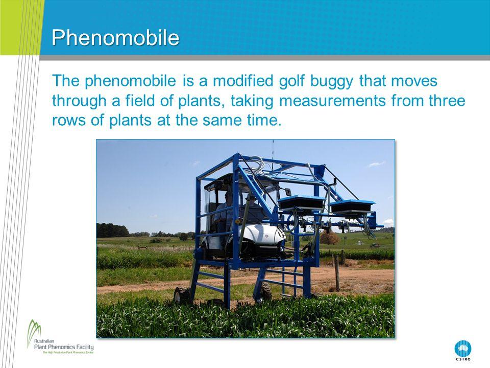 Phenomobile