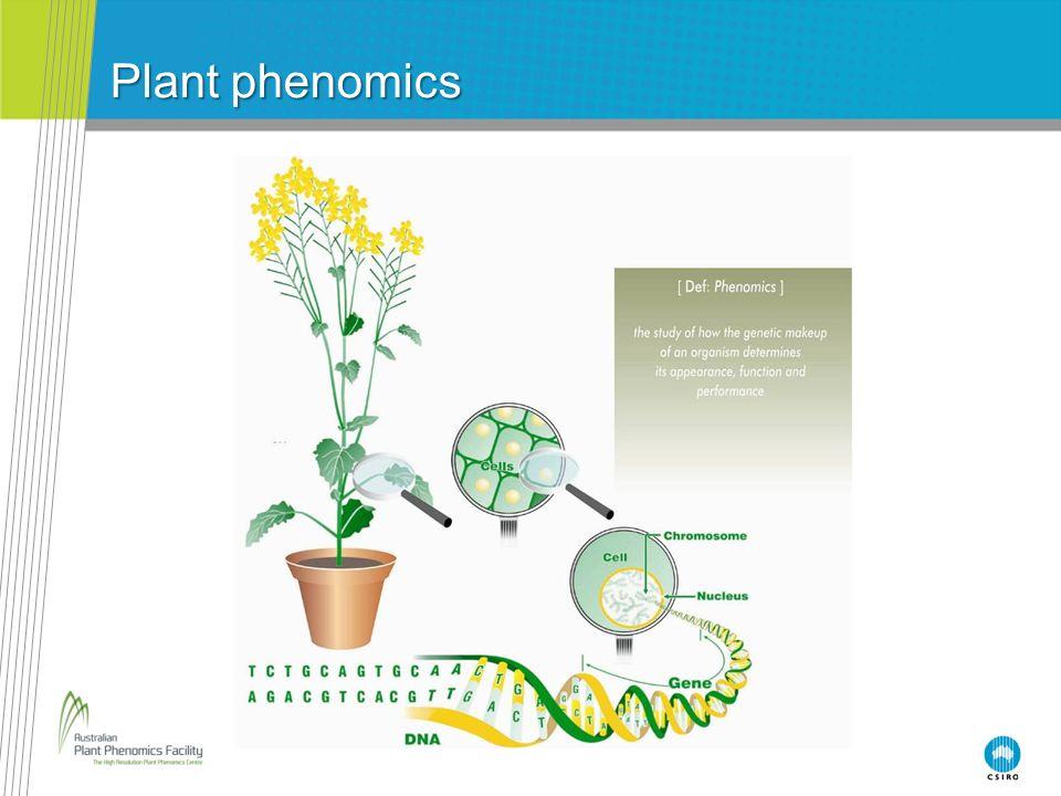 Plant phenomics Notes for teachers