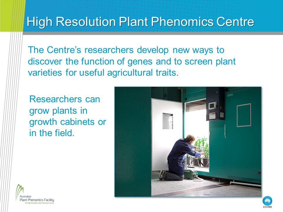 High Resolution Plant Phenomics Centre