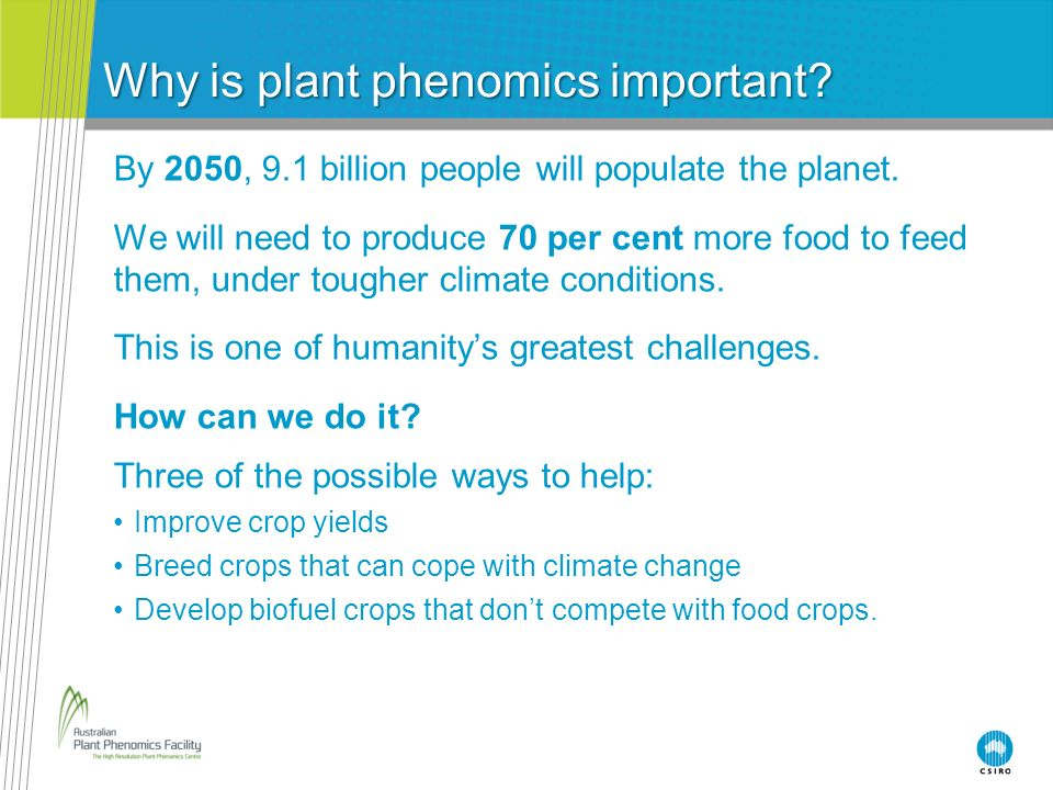 Why is plant phenomics important