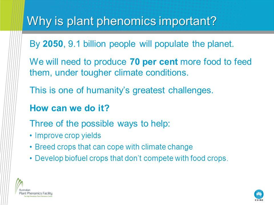 Why is plant phenomics important