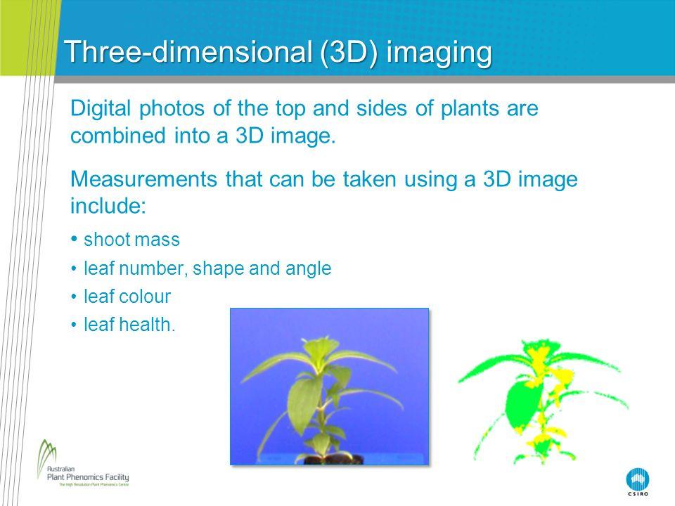 Three-dimensional (3D) imaging