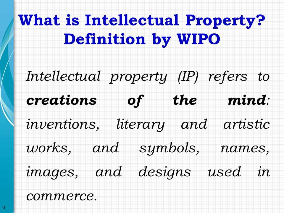 Term Paper on Intellectual Property Rights | Law | Business Management
