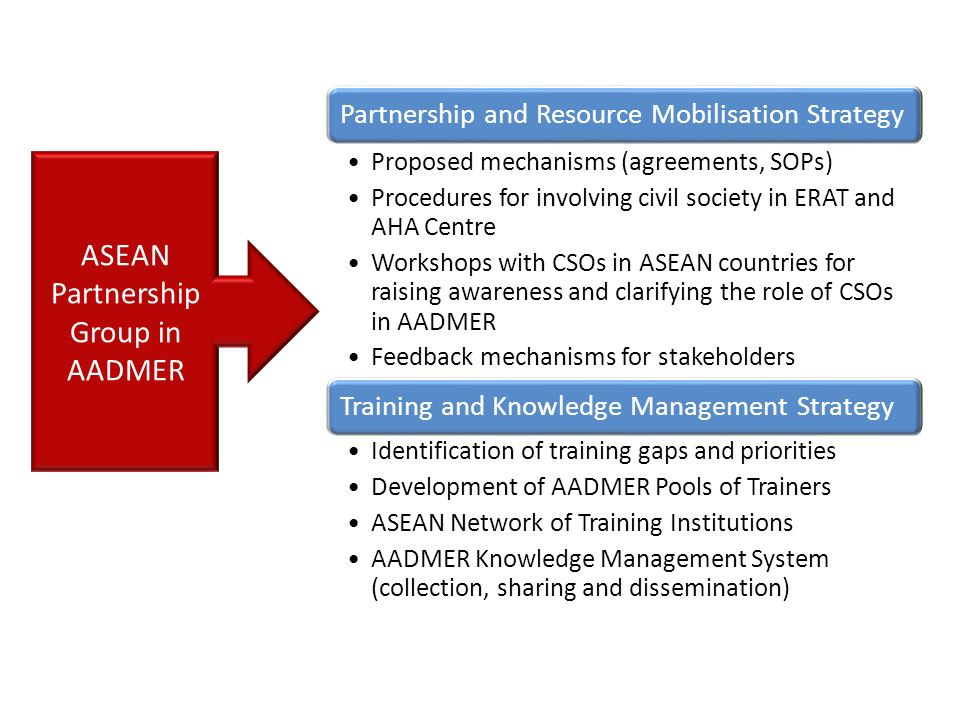 ASEAN Partnership Group in AADMER