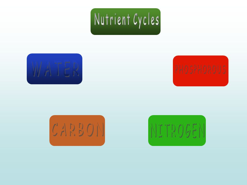 Nutrient Cycles WATER PHOSPHOROUS CARBON NITROGEN