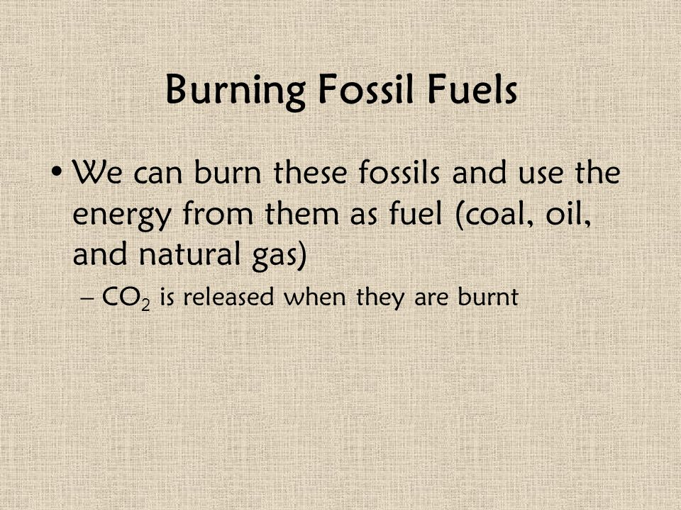Burning Fossil Fuels We can burn these fossils and use the energy from them as fuel (coal, oil, and natural gas)