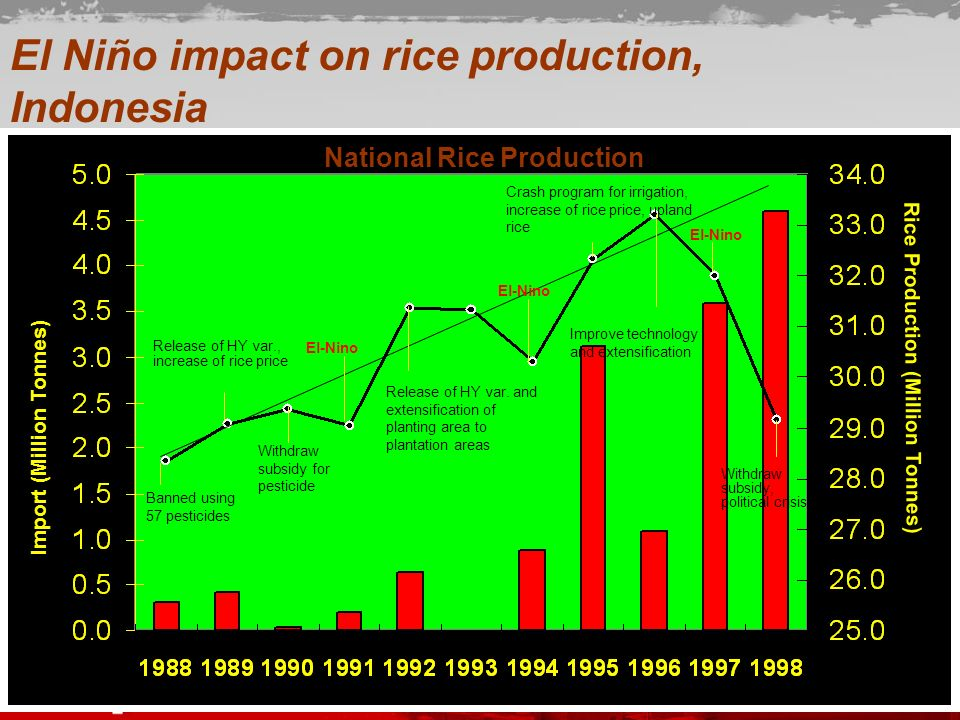 National Rice Production
