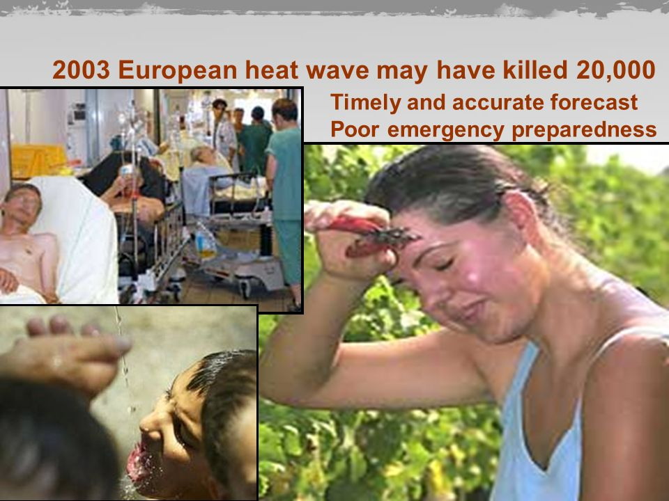 2003 European heat wave may have killed 20,000