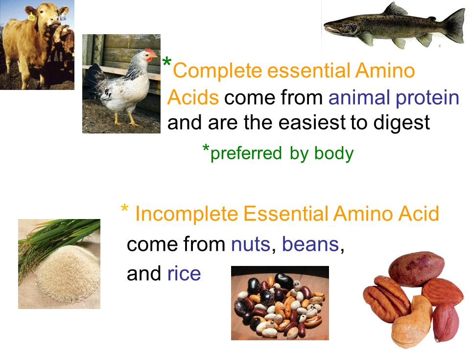 * Incomplete Essential Amino Acid come from nuts, beans, and rice