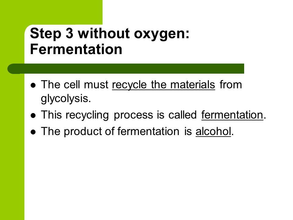 Step 3 without oxygen: Fermentation