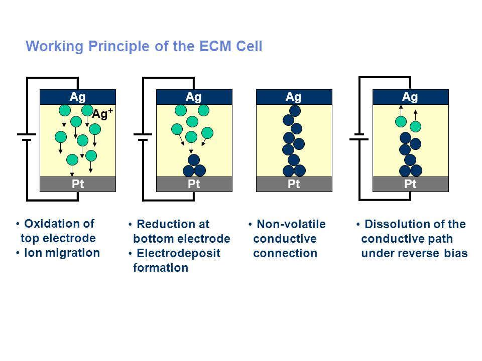 Working Principle of the ECM Cell