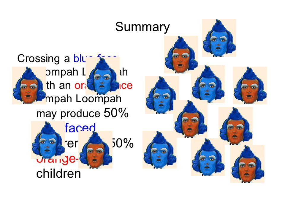 Summary Crossing a blue face Oompah Loompah with an orange face Ompah Loompah may produce 50% blue-faced children and 50% orange-faced children.