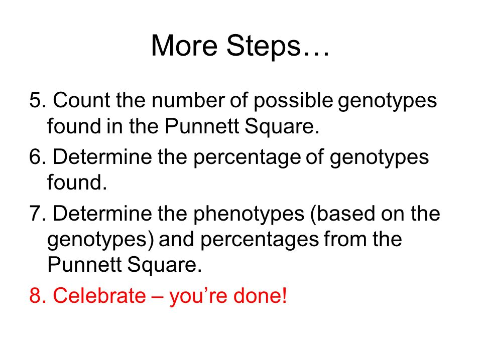 More Steps… 5. Count the number of possible genotypes found in the Punnett Square. 6. Determine the percentage of genotypes found.