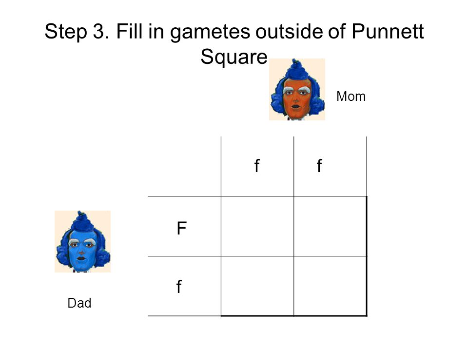 Step 3. Fill in gametes outside of Punnett Square
