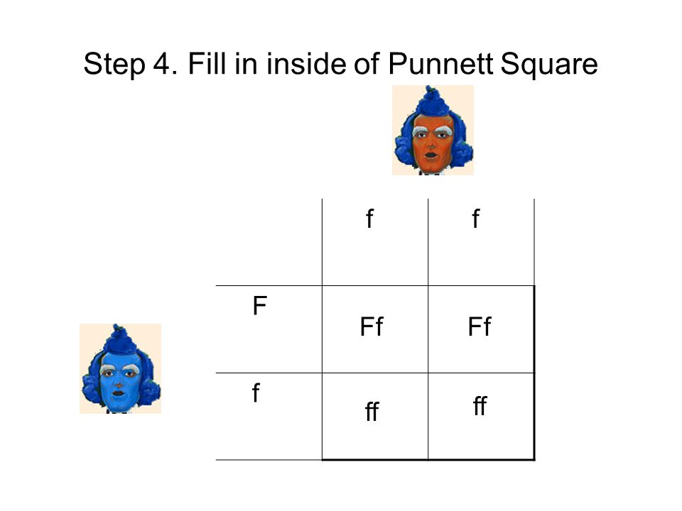 Step 4. Fill in inside of Punnett Square