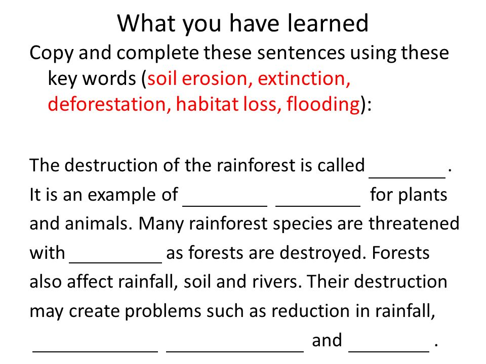 Deforestation ppt video online download for Words for soil
