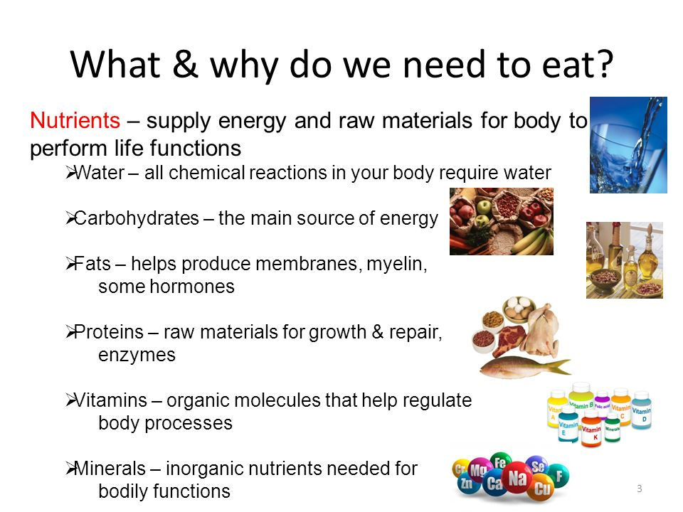 What & why do we need to eat