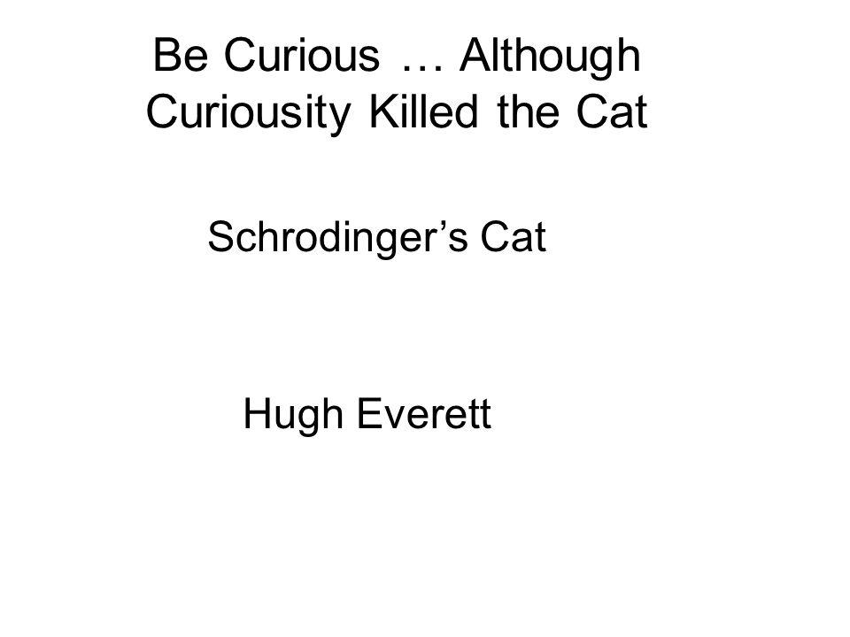 Be Curious … Although Curiousity Killed the Cat