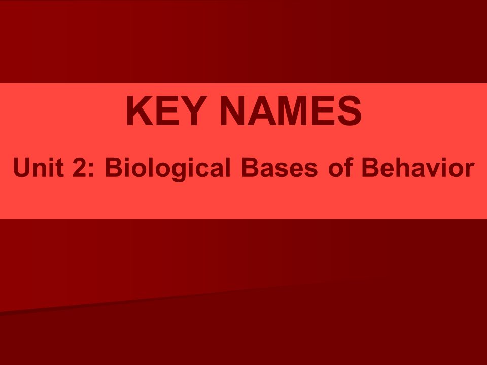 Unit 2: Biological Bases of Behavior