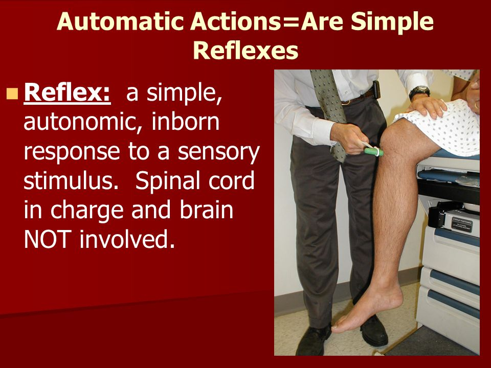 Automatic Actions=Are Simple Reflexes