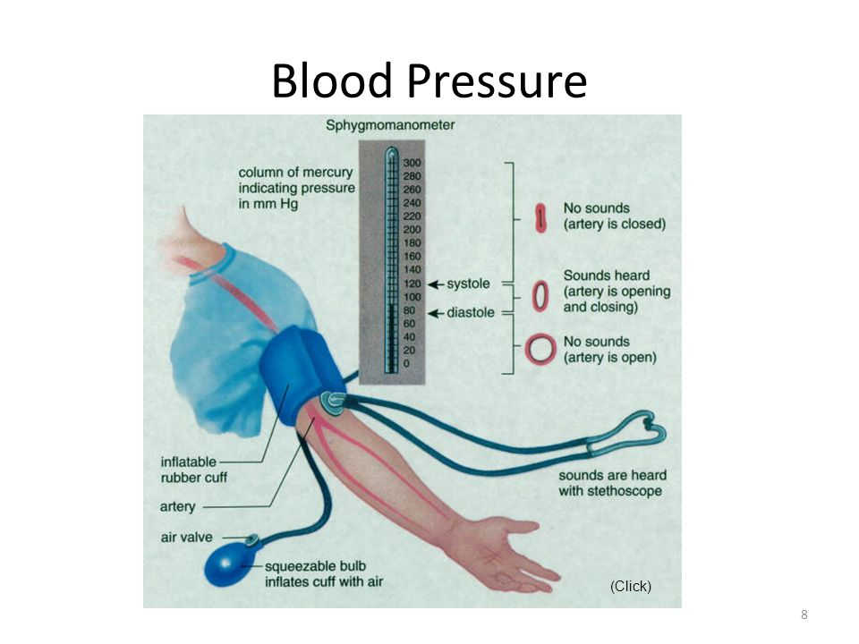 Blood Pressure (Click)