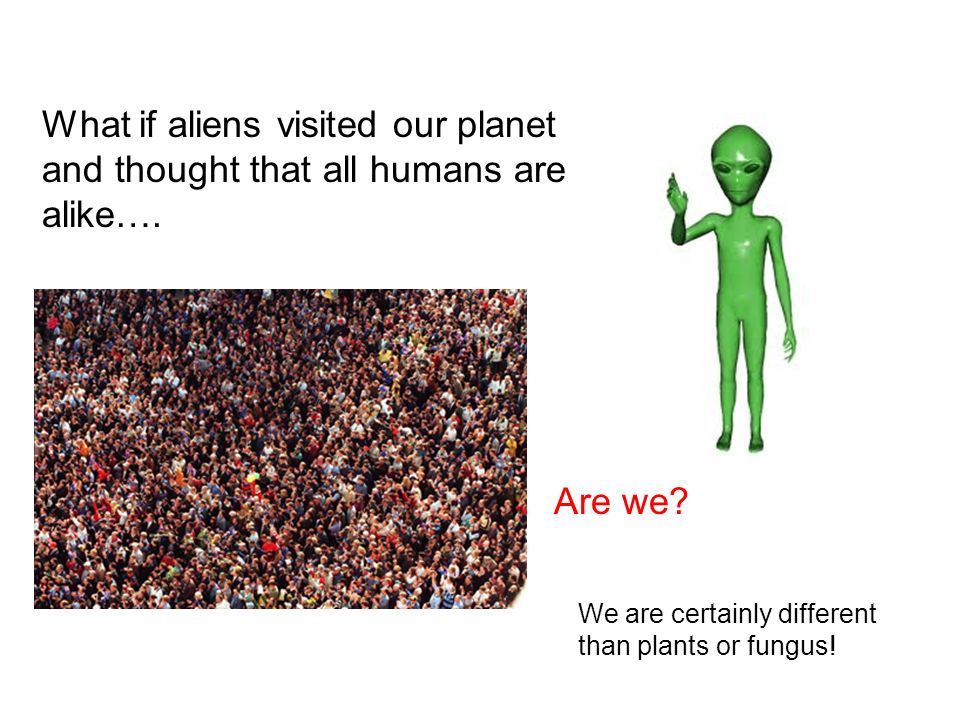 What if aliens visited our planet and thought that all humans are alike….